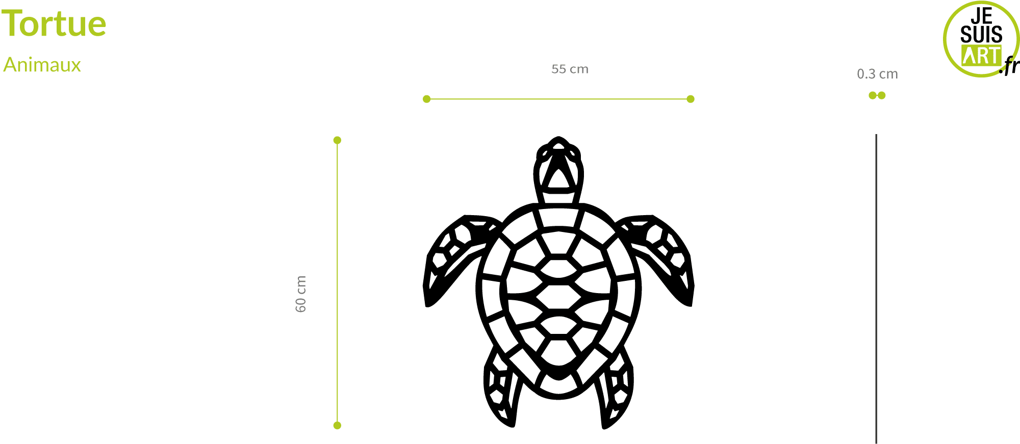 Tortue_sizes